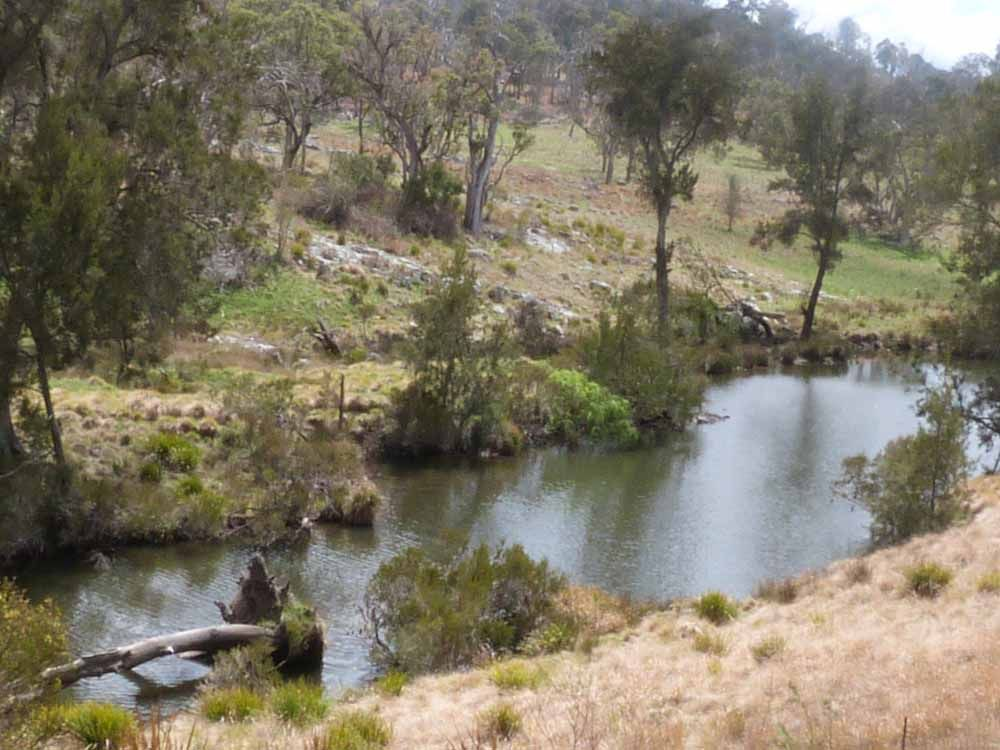 2/2563 Emmaville Road, Glen Innes NSW 2370, Image 1