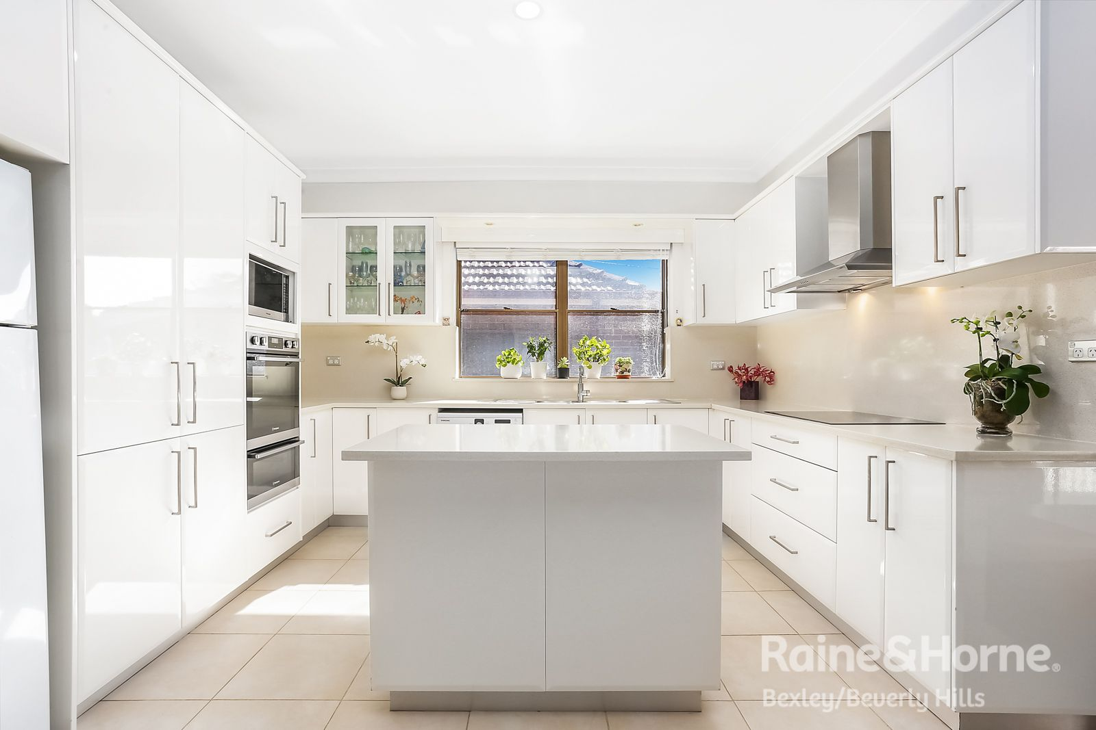 76 Staples Street, Kingsgrove NSW 2208, Image 2