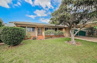 Picture of 114 Waminda Avenue, Campbelltown NSW 2560