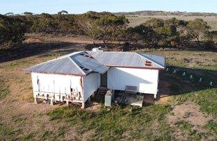 Picture of 1499 Black Hill Road, Black Hill SA 5353