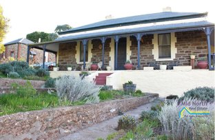 Picture of 7 Mount Pleasant Road, Burra SA 5417