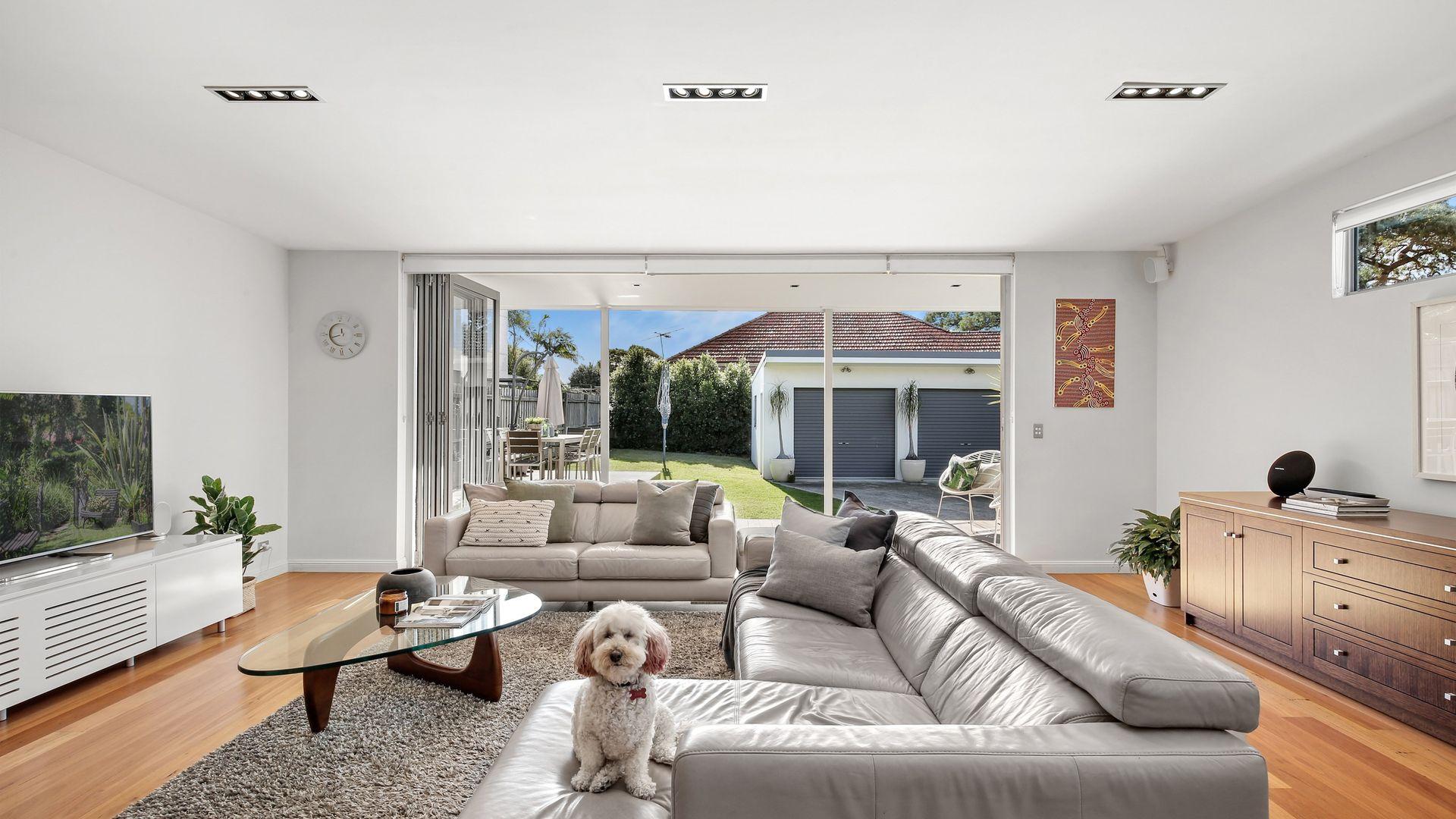 19 Hanks Street, Ashfield NSW 2131, Image 1