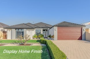Picture of 6 Fulmar Way, Seville Grove WA 6112