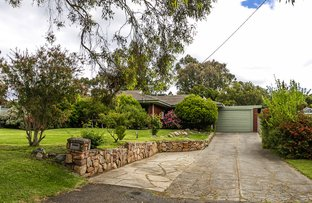 Picture of 7 Gabo Rd, Greenmount WA 6056
