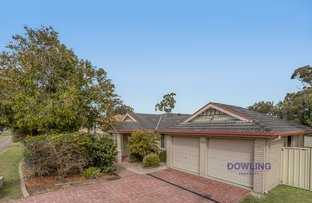 Picture of 151 Kindlebark Drive, Medowie NSW 2318