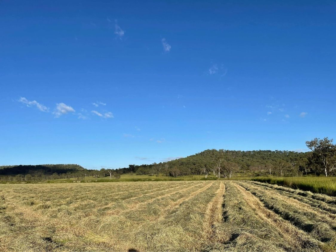 Oaky Creek QLD 4285, Image 1