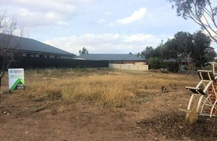 Picture of 7 Male Road, Mannum SA 5238