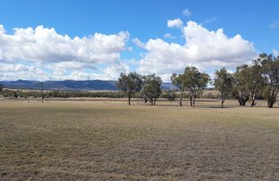 Picture of Lot 3 MICHAEL CLOSE, Moonbi NSW 2353