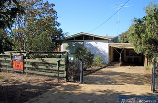 Picture of 23 Hayes Street, Henty NSW 2658