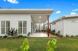 Picture of 9 Red Berry Lane 'Horizons North', Woombye QLD 4559