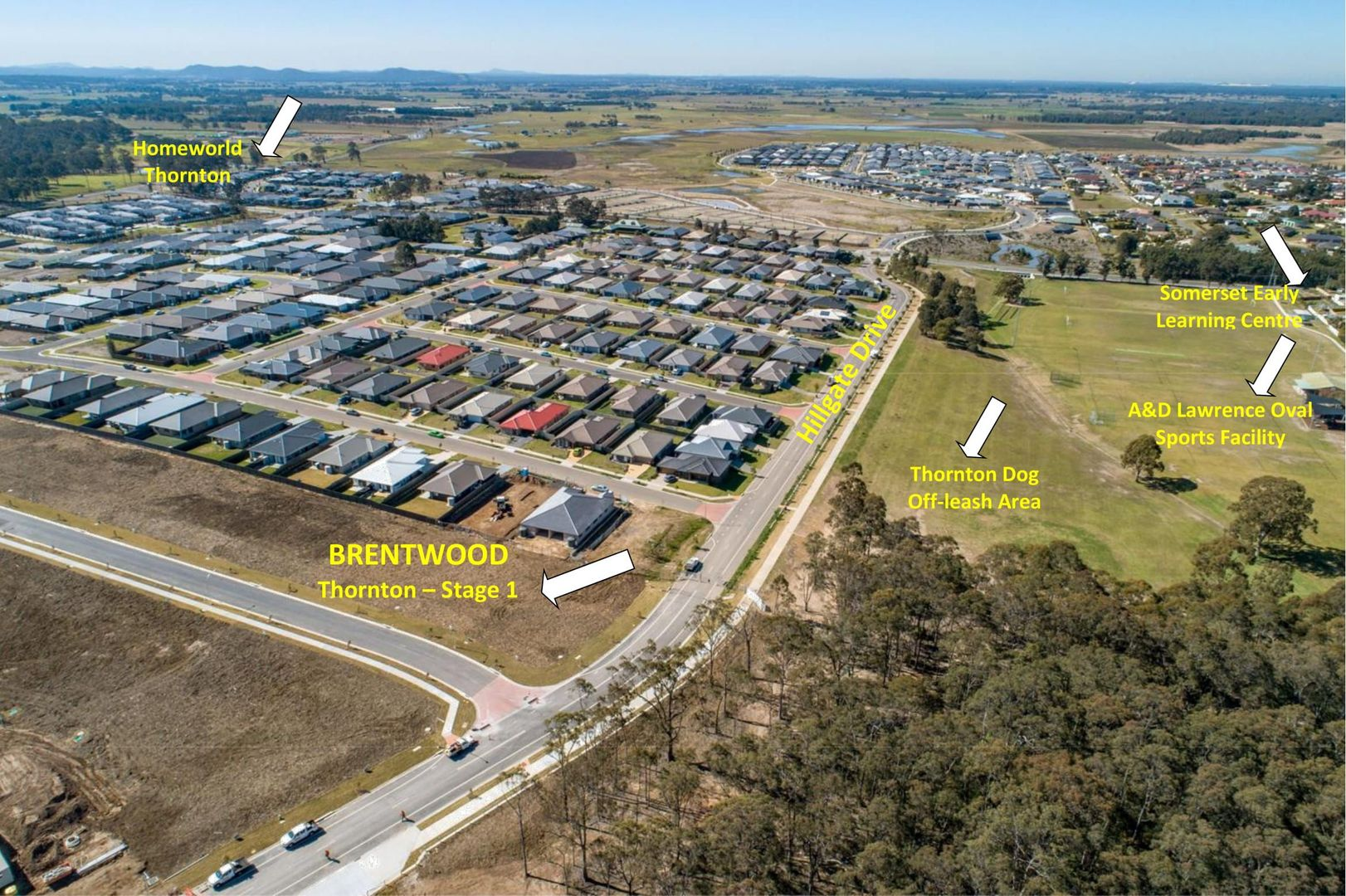 Lot 317 BRENTWOOD, Thornton NSW 2322, Image 2