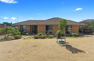 Picture of 1 Neville Avenue, Christies Beach SA 5165