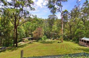 Picture of 9 Pademelon Pass, Nerang QLD 4211