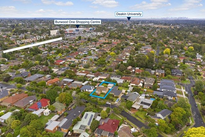 Picture of 10 Hutchinson Street, BURWOOD EAST VIC 3151