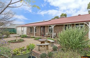 Picture of 22 Shamrock Way, Roseworthy SA 5371
