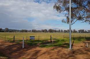 0 Mansfield Road, Temora NSW 2666