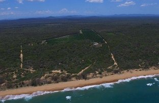 Picture of 257 Kate Avenue, Deepwater QLD 4674
