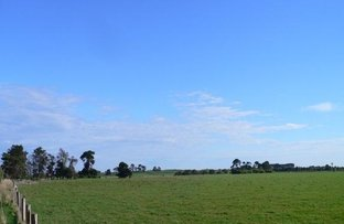 Picture of Toolong North Road, Toolong VIC 3285