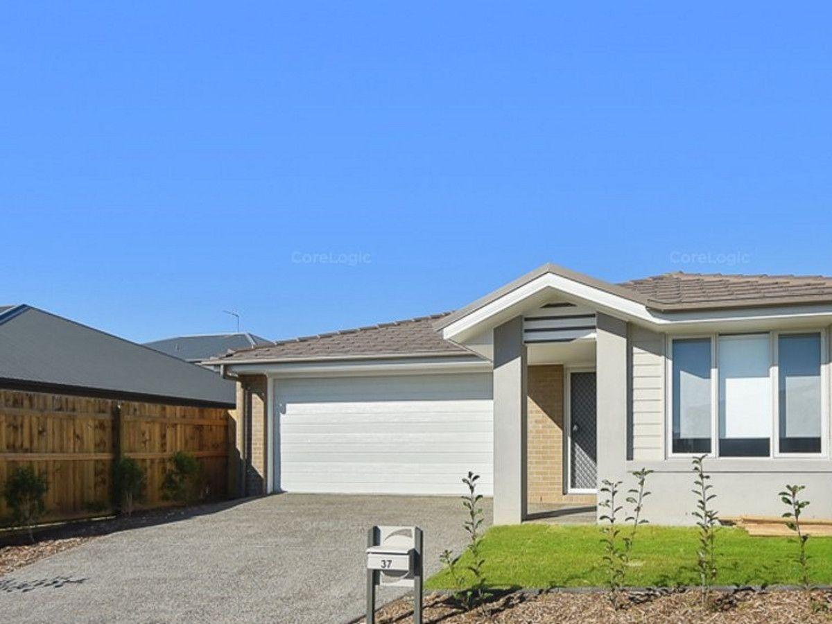 37 Hardwood Street, Spring Mountain QLD 4300, Image 0