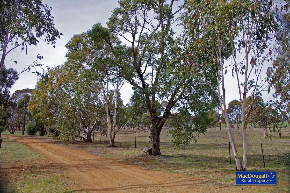 Kellys Plains Road, Armidale NSW 2350, Image 1