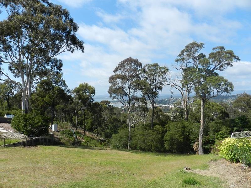 24 Camilla Court, Mirador NSW 2548, Image 2