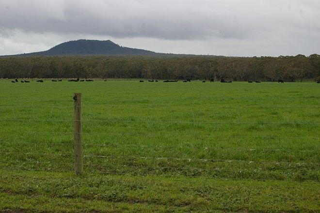 Picture of - Murroa-Bukley Swamp Rd and Coles Track, MOUNT NAPIER VIC 3301