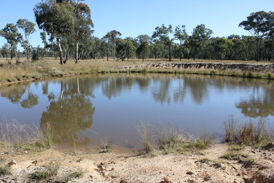 Thistledoo 14371 Guyra Rd, Tingha NSW 2369, Image 2