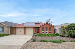 Picture of 12 Quinn Street, Christie Downs SA 5164