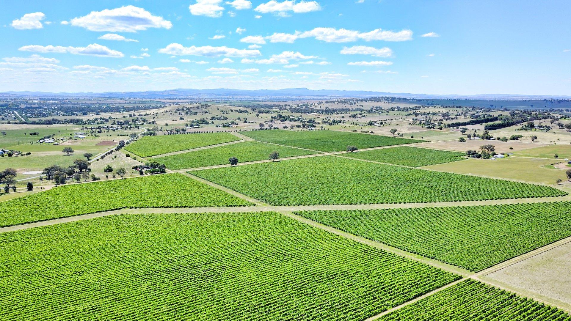 3994 Belubula Way, Canowindra NSW 2804, Image 1