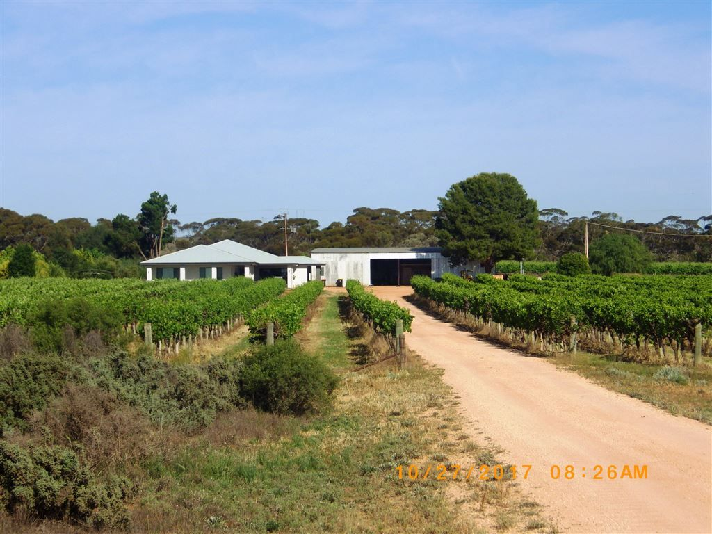784A Government Road, Renmark West SA 5341, Image 2