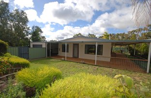 Picture of 36 Parry Court, Narrogin WA 6312