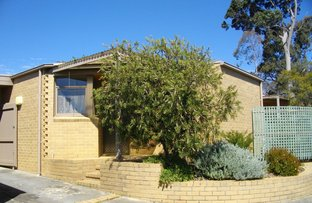 Picture of 7/10-12 Bedford Street, Box Hill VIC 3128