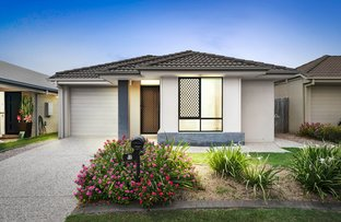 Picture of 40 Nutmeg Drive, Griffin QLD 4503
