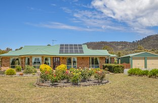 Picture of 10 Mahogany Place, Acton Park TAS 7170