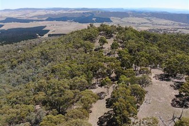 Picture of Lot 67 & 74 Corrowong Road, CORROWONG NSW 2633