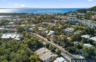 19 Grant Street, Noosa Heads QLD 4567