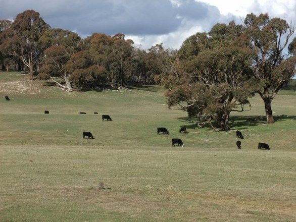 ARKELL NSW 2795, Image 1