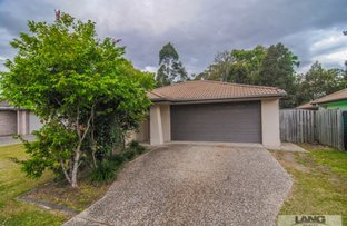 Picture of 52 Runway Drive, Upper Coomera QLD 4209