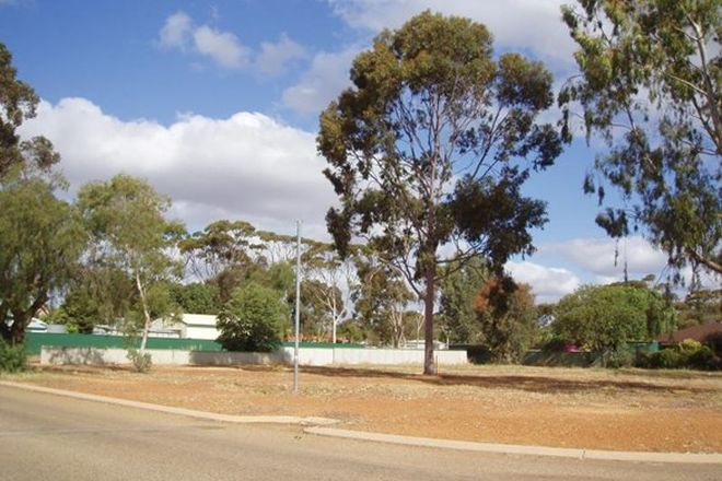 Picture of 31 Clinch Street, MOORA WA 6510