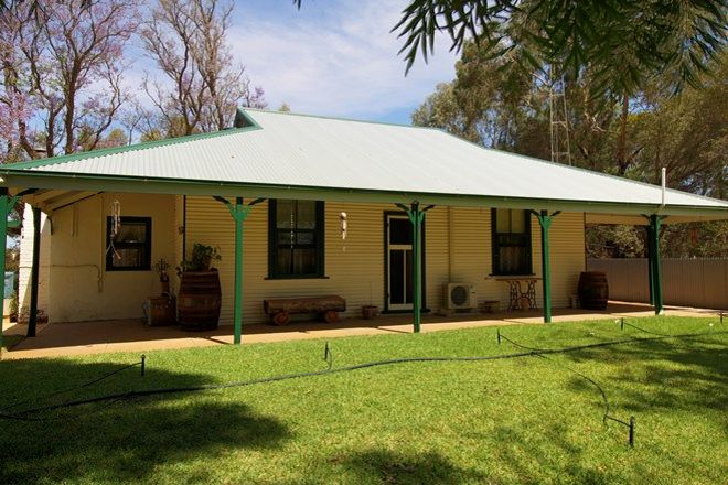 Picture of 888 Thiele Road, LOVEDAY SA 5345