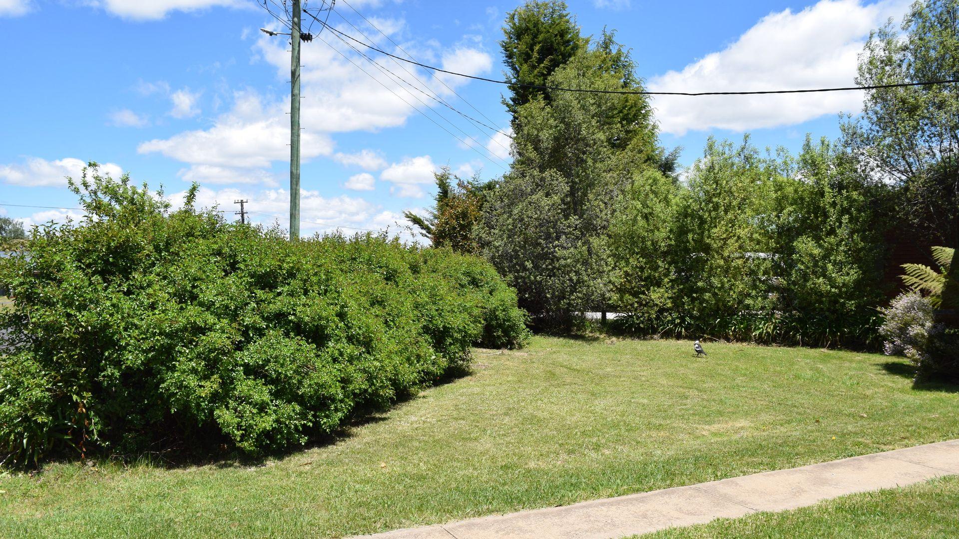 23 Ebor Road, Guyra NSW 2365, Image 1