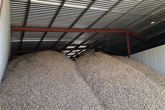 Picture of Jakad Almonds 222 Papershell Avenue, LINDSAY POINT VIC 3496