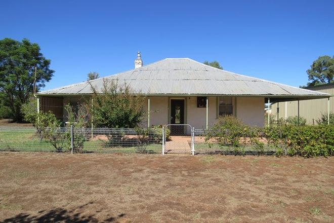 Picture of 10 Forbes Street, GOOLOOGONG NSW 2805