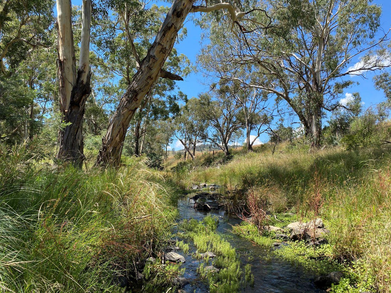 41 Campbells Creek Road, Mudgee NSW 2850, Image 0