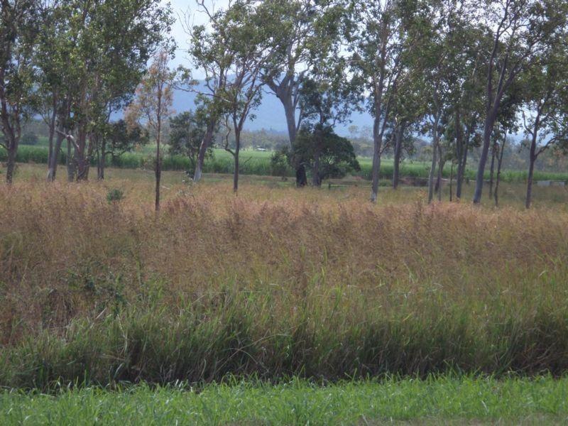 Leichardt Road, Mirani QLD 4754, Image 1