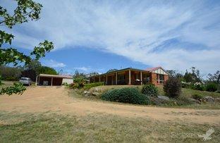 Picture of 159 Costanzo Lane, Ballandean QLD 4382