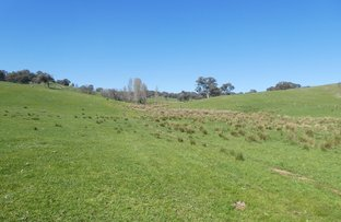 Picture of 1650 Hume Highway, Tarcutta NSW 2652