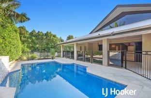 16 Treefern Street, Frenchville QLD 4701