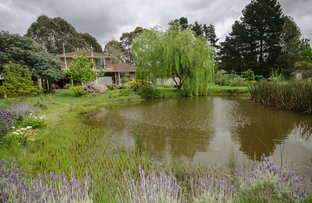 Picture of 110 Forrest Dr, Nyora VIC 3987