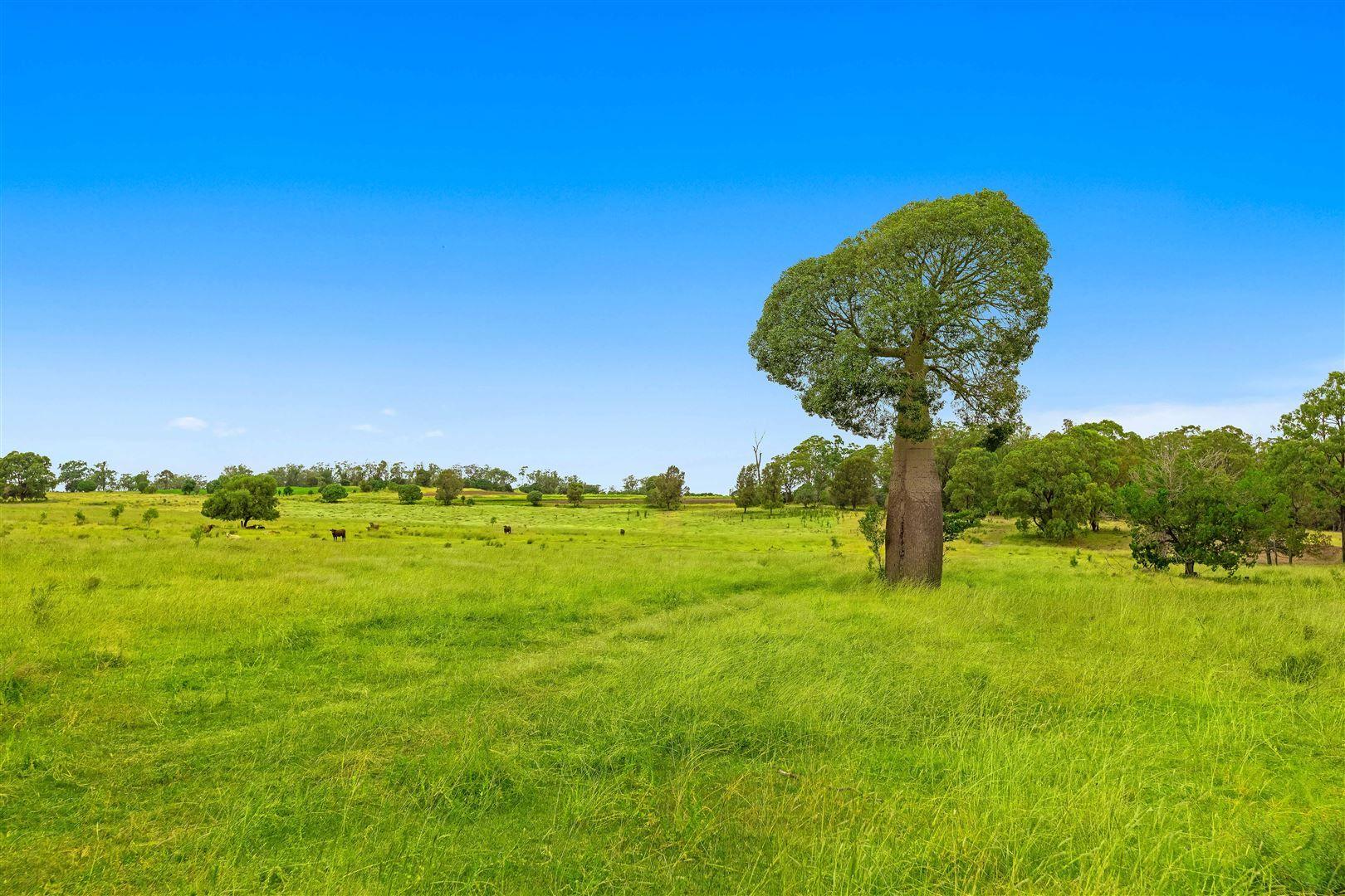 250 Vonhoffs Road, Goombungee QLD 4354, Image 0